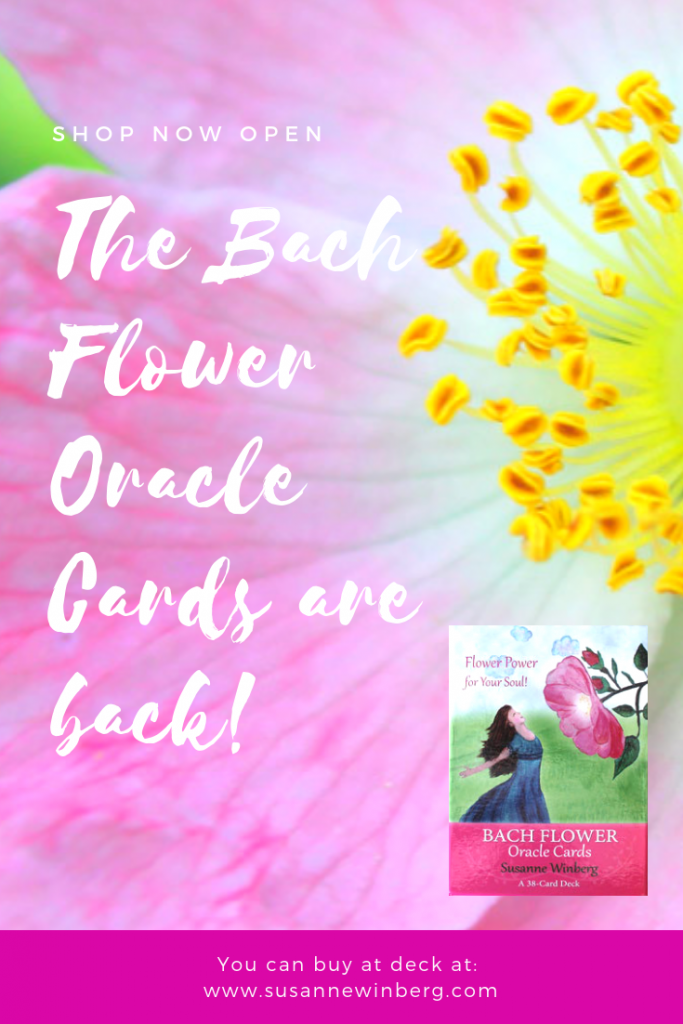 bach flower oracle cards Susanne Winberg shop now open