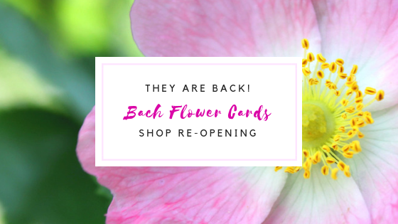 Bach Flower Oracle Cards are back!