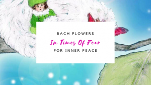 Bach Flowers in Times of Fear